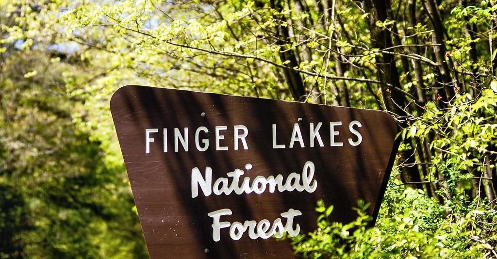 Finger_Lakes_National_Forest_Sign
