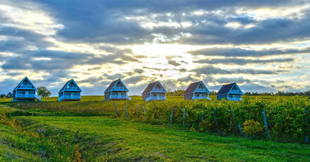 Vineyard Villas - Villas on Hill at Sunrise