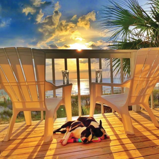 Cape Escape Vacation Rentals