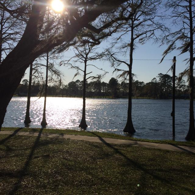 Lake Alice Park