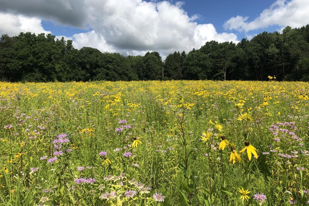 Anderson Farm County Park
