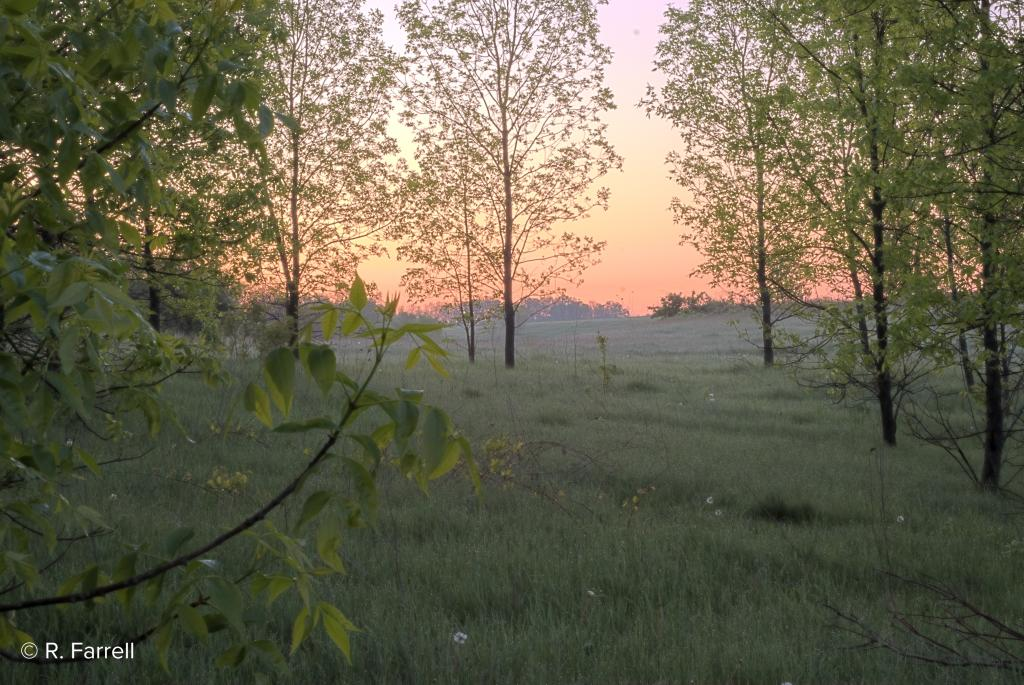 Badger Prairie County Park