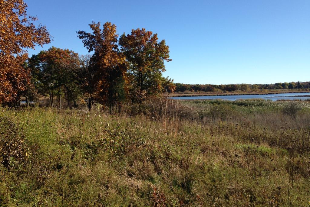 Cherokee Marsh NRA