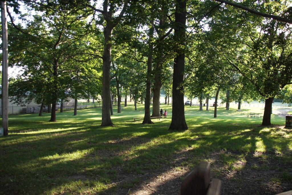 Sun Prairie Dream Park - Green space