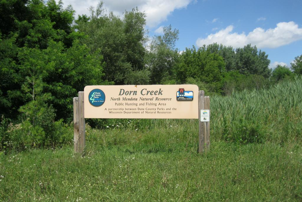 Dorn Creek