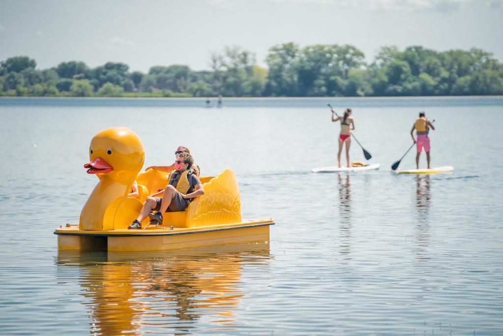 Rent the Duck Paddle Boat on Lake Wingra in Madison Wisconsin