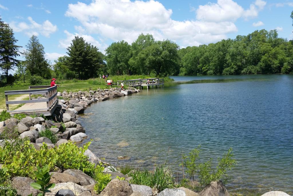 Salmo Pond