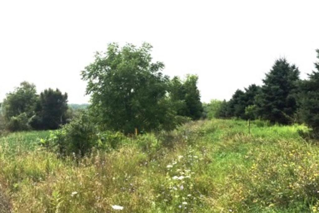 Token Creek WA