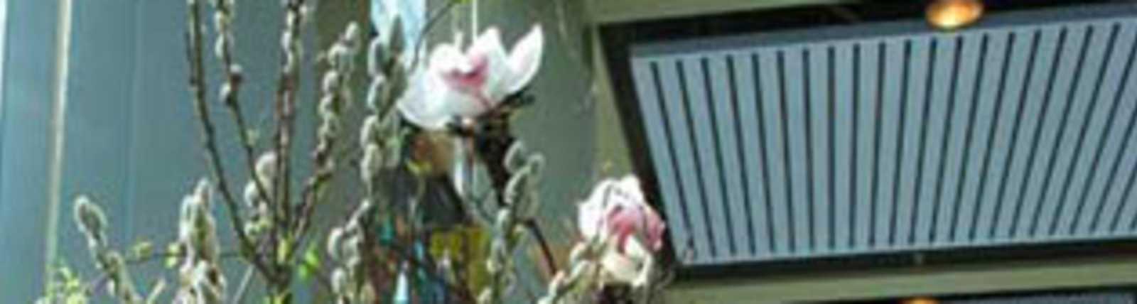 Flora_Laura__Marine_View_Florist_-4.jpg