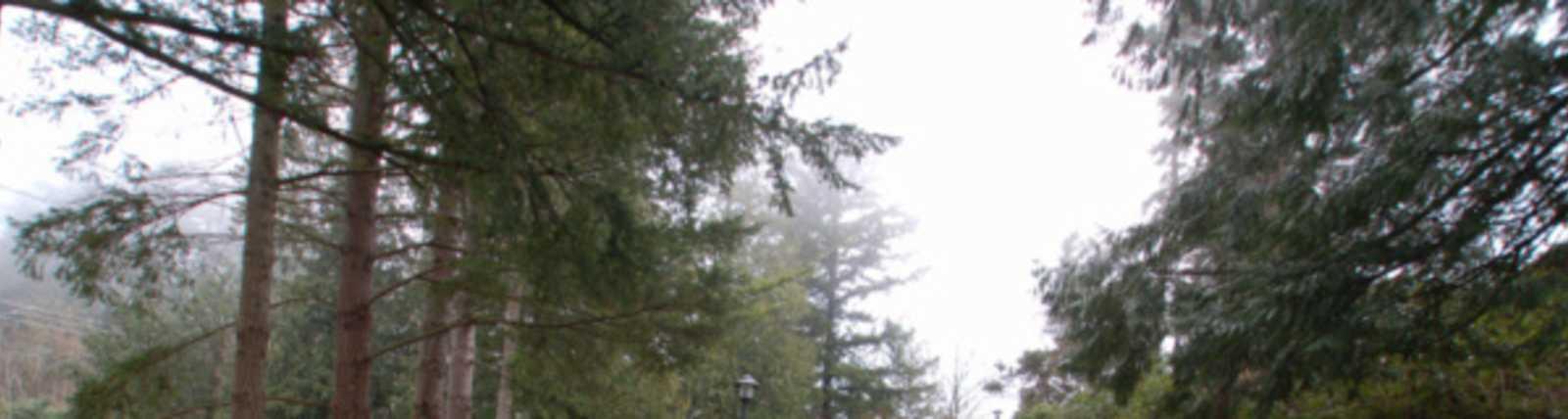 Snoqualmie_Falls-5.jpg
