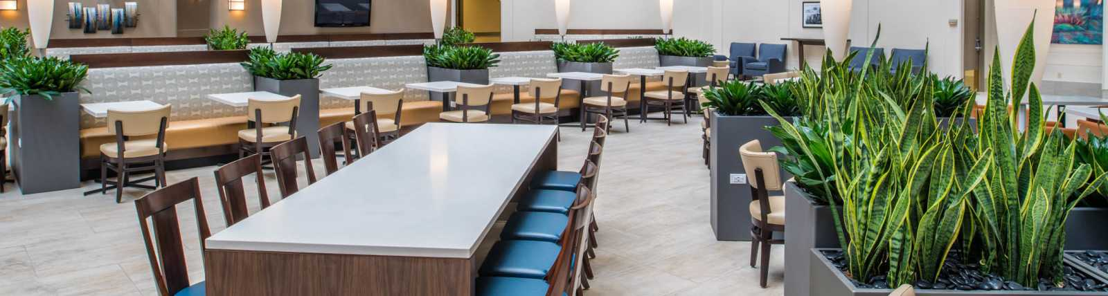 meeting-facility-Embassy_Suites_Seattle-Tacoma_International_Airport_Meeting_Facility-6.jpg