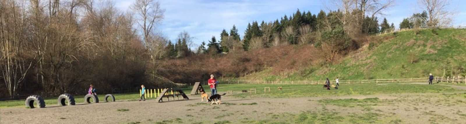 Grandview Off-Leash Dog Park