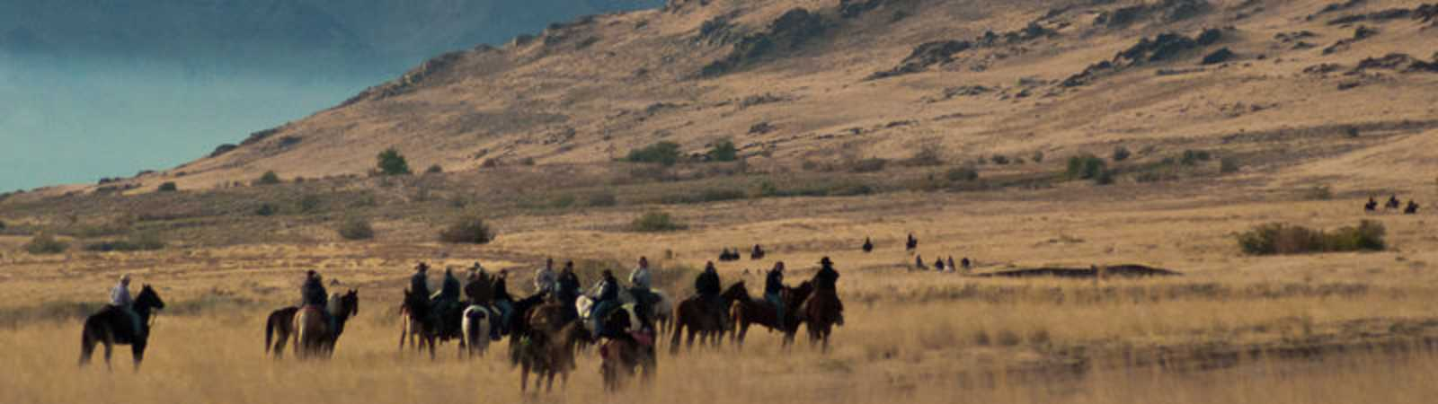 Midvale Heights Bison Celebrate >> Antelope Island State Park