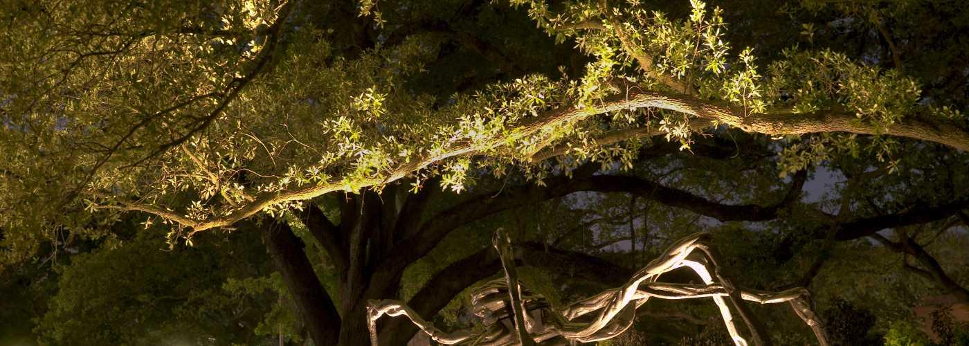 Sydney and walda besthoff sculpture garden - Sydney and walda besthoff sculpture garden ...