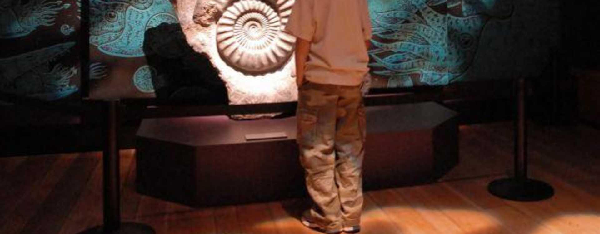 Burke_Museum.jpg
