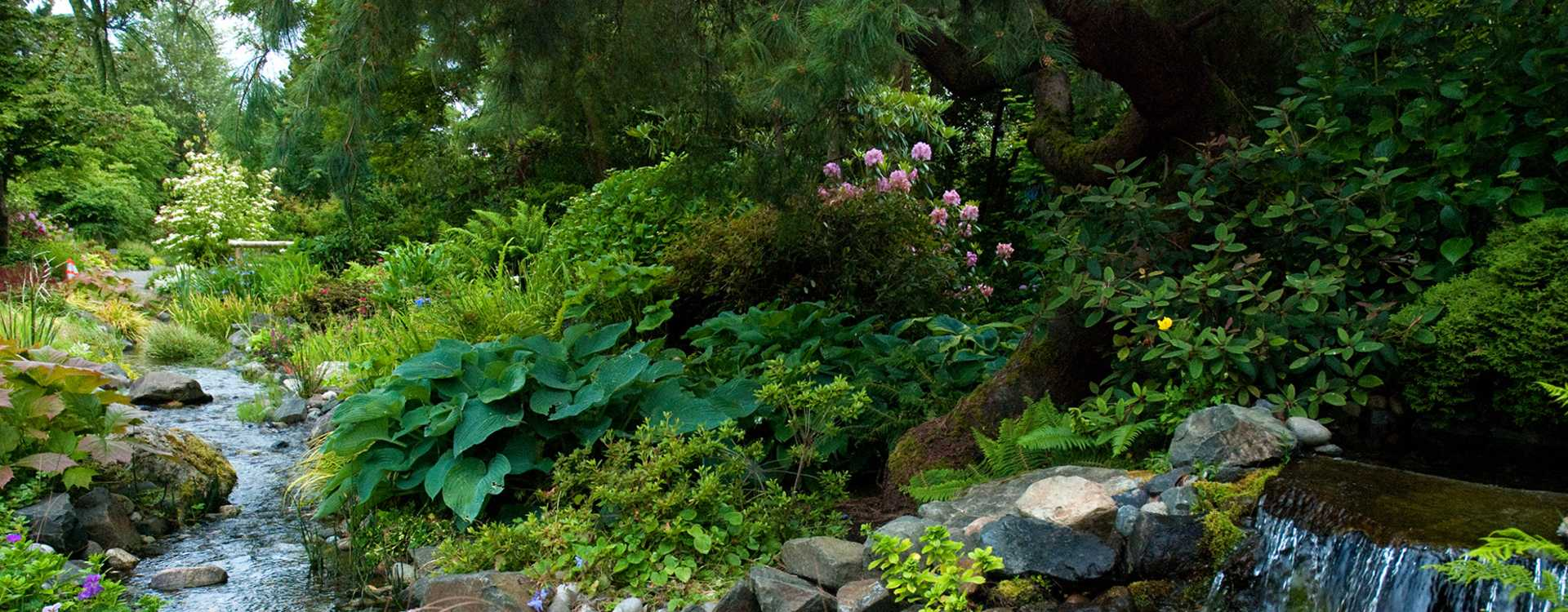 Mira's Garden