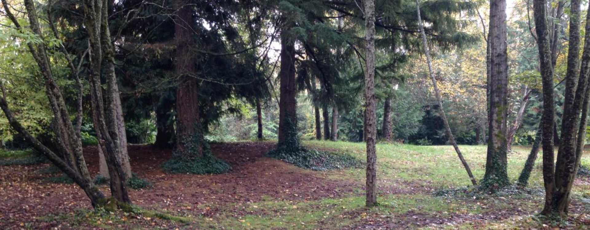 North SeaTac Park