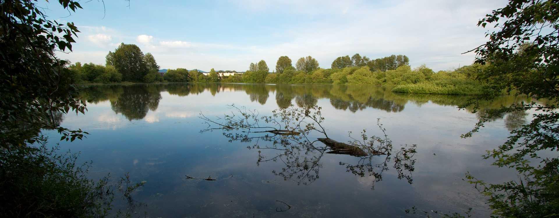 Tukwila-Pond