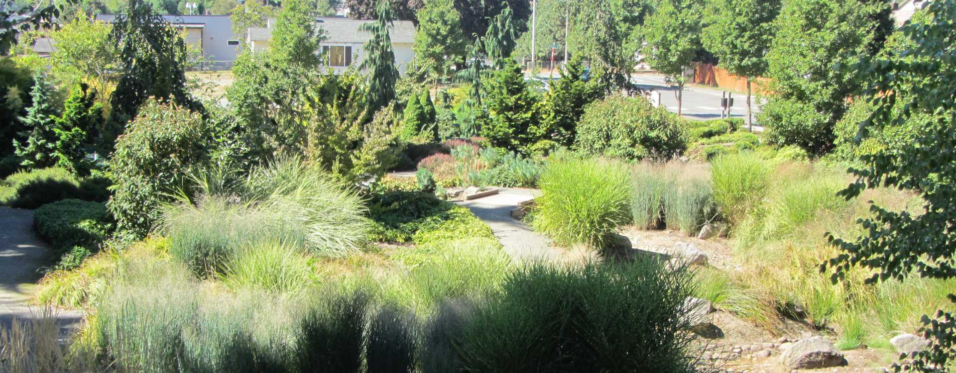 Macadam Winter Garden