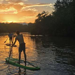 Summer Paddleboarding Adventure on the French Broad River