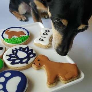 Dog Treat Decorating Class