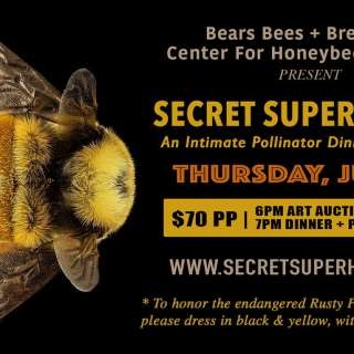 Pollinators: Secret Superheroes
