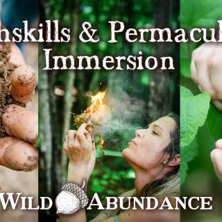 Earthskills & Permaculture Immersion