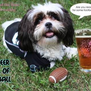 Beer Days of Football