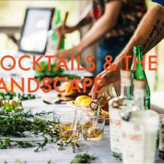 Chow Chow Virtual Series: Cocktails & The Landscape