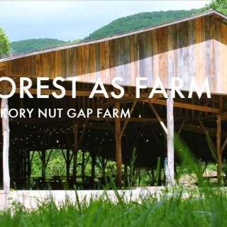 Chow Chow: Forest As Farm