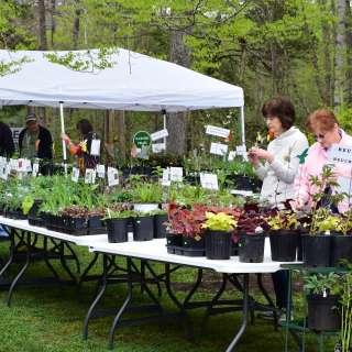 Bullington Gardens May Plant Sale