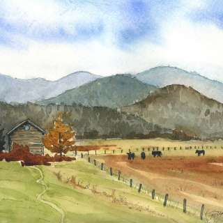 The Asheville Gallery of Art Presents,  Zoe Schumaker and Sue Dolamore, October AOM:  In Kinship with the Land