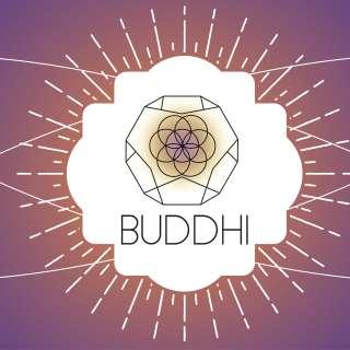 Buddhi Yoga @ Archetype