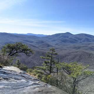 Curated Asheville - Our Best Hikes for Small Groups and Couples