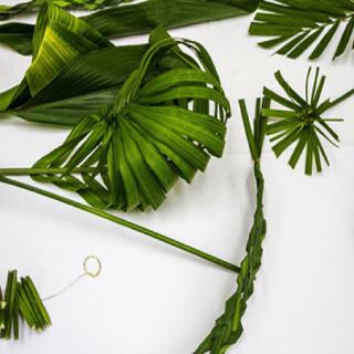 Ikebana Demonstration and Workshop