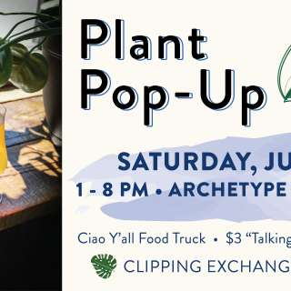 Plant Pop-Up with Palm + Pine @ Archetype Broadway