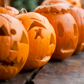 Light Up State Street: Community Pumpkin Carving Contest