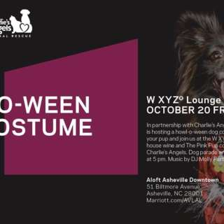 Howl-O-Ween Dog Costume Party