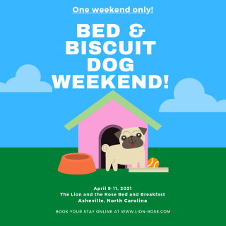 Bed & Biscuit Dog Weekend