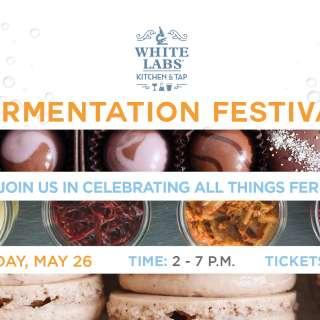 Fermentation Fest!