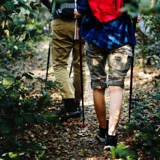 Asheville Trail Blazer