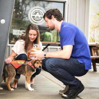 Mountain Pet Rescue Day at Archetype Brewing