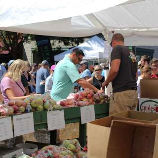 North Carolina Apple Festival