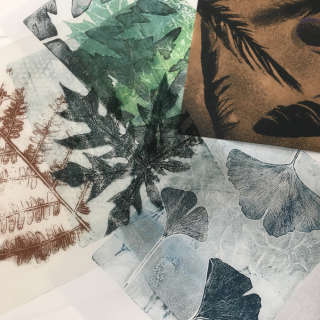 Ink and Light! Nature Printing on Paper and Fabric, with Bridget Benton
