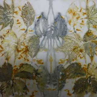 Eco Printing 2 day Comprehensive with Bridget Benton
