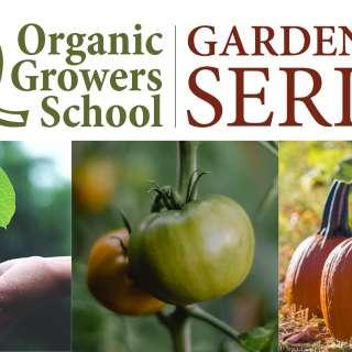 VIRTUAL: Fall Organic Gardening Series