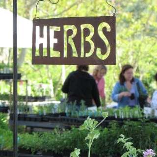 Asheville Spring Herb Festival 2019