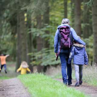 Family Friendly Forest Bathing