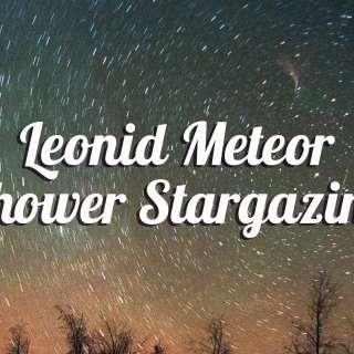 Leonids Meteor Shower Stargazing