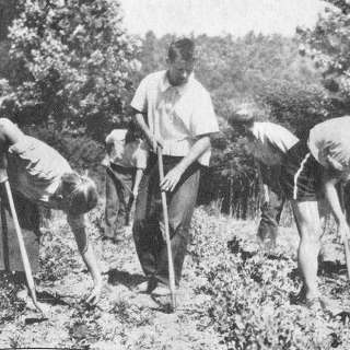 WNC History Café: Black Mountain College in the Community (online)